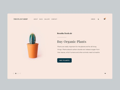 Plants plant ux flat web design branding typography design