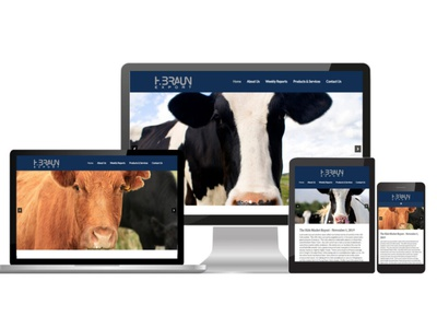 Braun - AA Graphics - Website Design Portfolio website website design graphic design