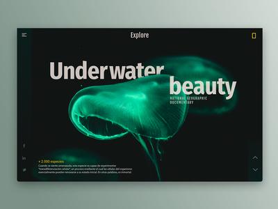 Jellyfish ui page portfolio photoshop inspiration home dribbble behance website webdesign web design