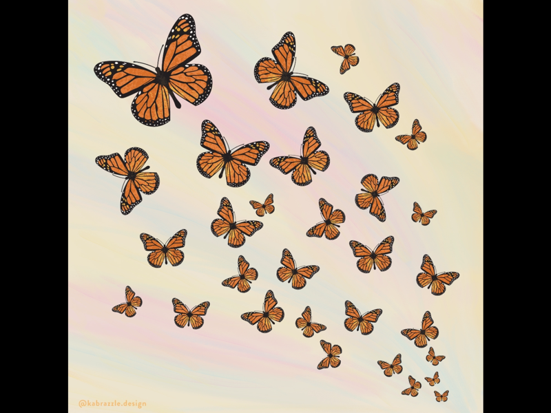 First Day of Spring illustration insects bugs photoshop illustrator butterfly