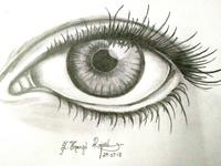 Pencil Shaded Eye