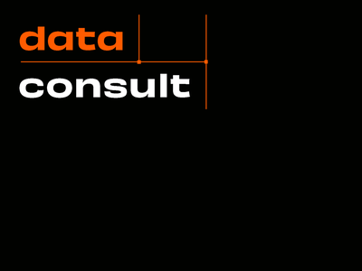 Branding for Logistic IT Company   Data Consult logotype it logistics brand book geometrical orange logo logo design minimal brand identity brand identity design ui branding graphic design