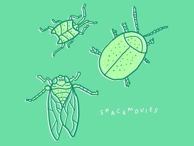 Bug Study #3