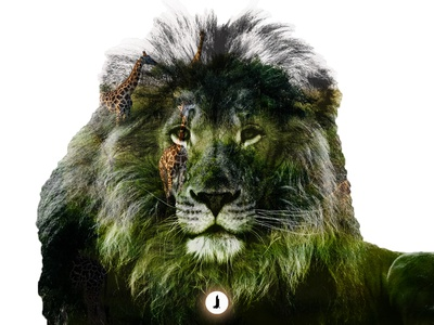 Double Exposure | Lion | Photography Project