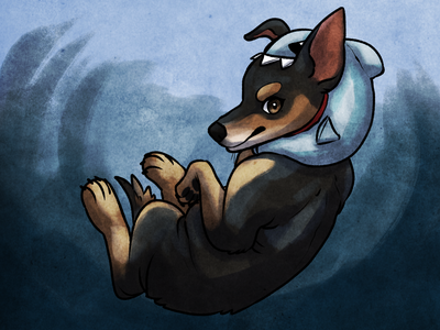 Celine chihuahua dog illustration pet petillustration