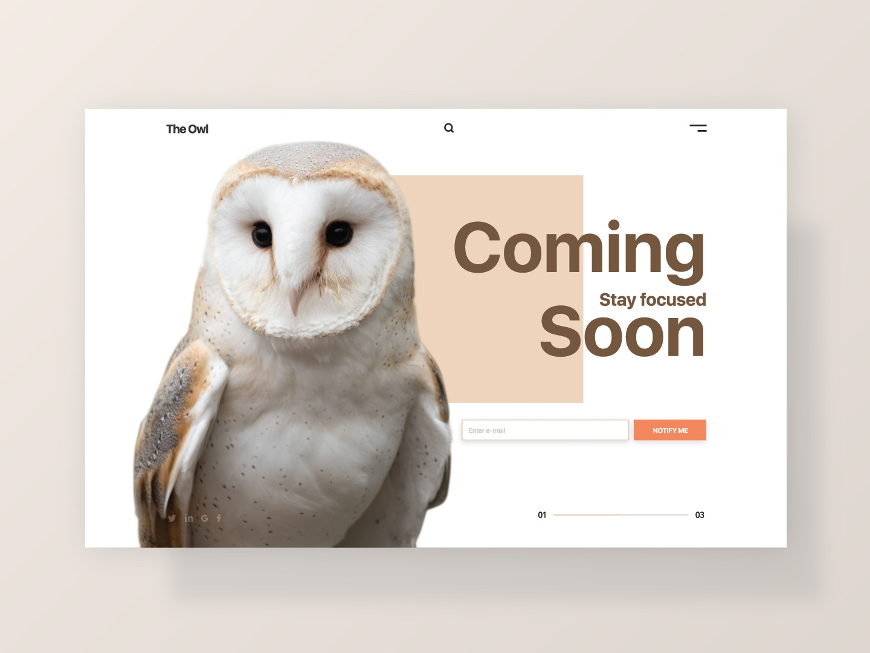 Coming Soon flat design digitaldesign interface figma owl clean comingsoon dailyinspiration webdesign dailyui048 ui dailyui