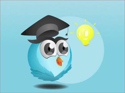 Owl Idea