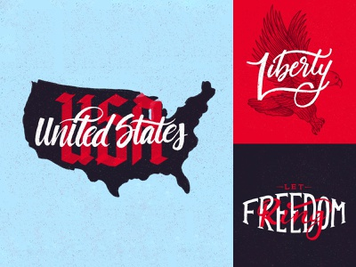 USA type typography type art citizen proud pride country united states of america freedom liberty illustration drawing eagles eagle flag u.s.a. america united states usa