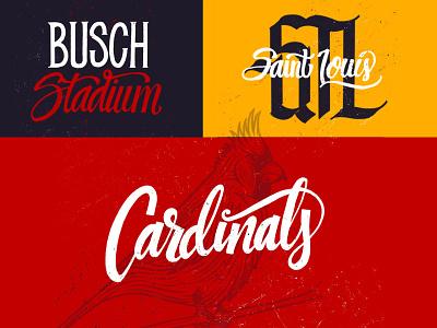 STL Cards major league baseball baseball st. louis gateway city gateway st. louis cardinals saint louis cardinals fred bird red birds birds saint louis stl cards cards cardinals cardinal