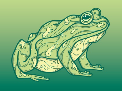 Frog ribbit hop warts nature amphibian toad frogs frog