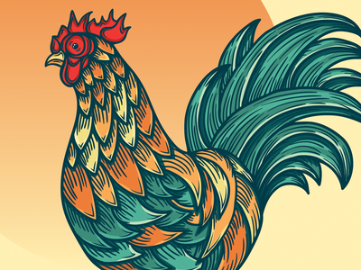 Rooster gobble beak wings talons bird feathers chicken rooster