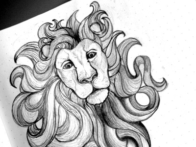 Lion lion drawing pencil sketch shading character line line work