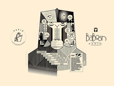 Babboon textures infographic handlettering symbols animals monkey lettering vector custom type branding design illustration