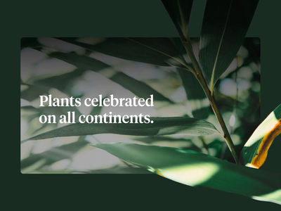 Plants Day botanical plants user interface after effects sketchapp motion interface ui ux web design web