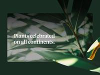 Plants Day