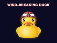 WIND-BREAKING DUCK