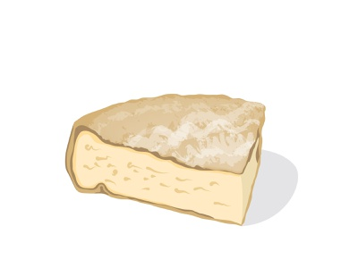 Tomme - Cheese of the Alps eat food toome cheese vector marmotamaps alps alpenkäse
