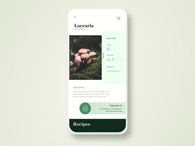 Forage App Concept brown 2 color minimal green mobile app design mobile ui mobile