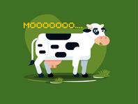 flat cows