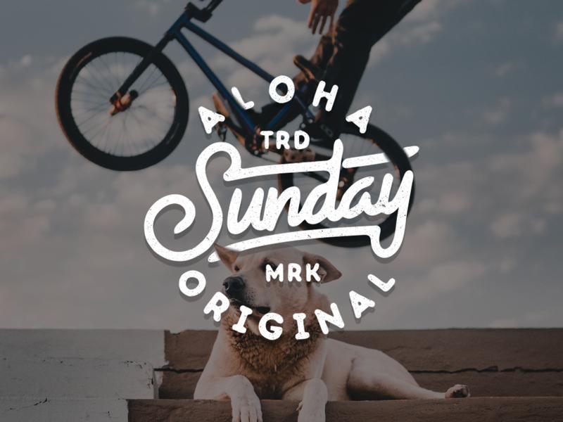 Sunday is Funday illustrator vector typography design