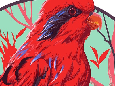 Blue-streaked Lory parrot bird digital painting drawing illustration blue streaked lory