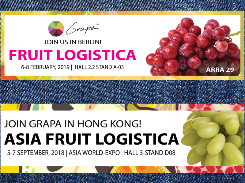 Fruit Logistica Email Banners graphic design photoshop indesign email banner