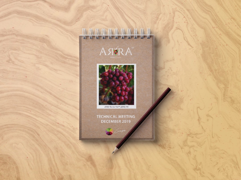 Palm notebook, red grapes indesign photoshop swag print