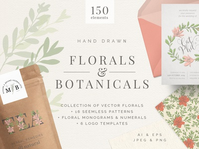 Hand Drawn Florals And Leaves