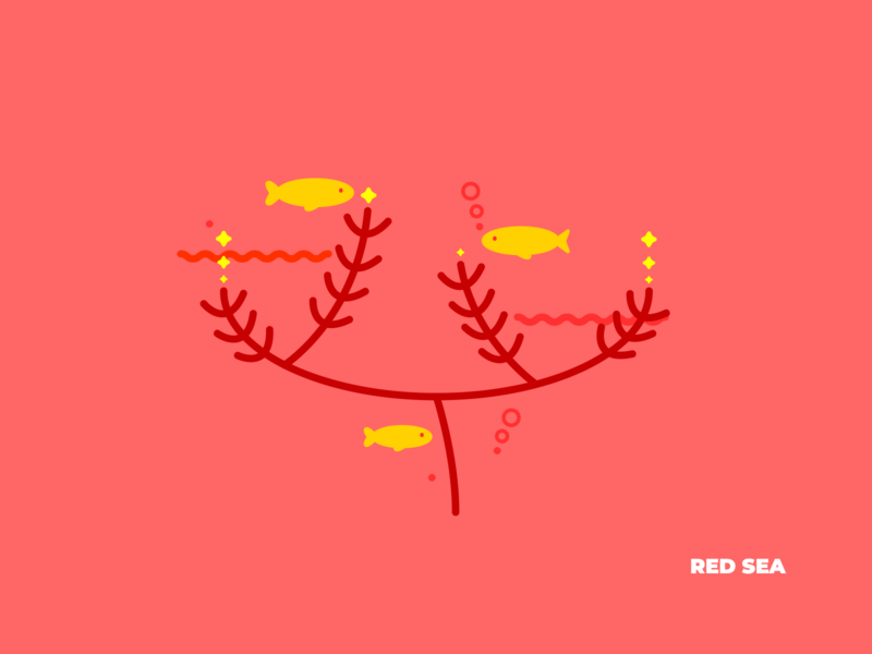 Red Sea geometric coral fish sea nature illustration vector