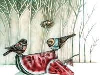 Birds on summer