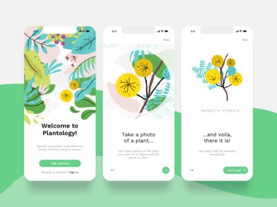 Nature app illustrations