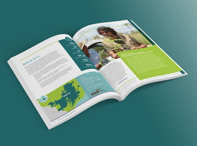 Annual Report for DGM