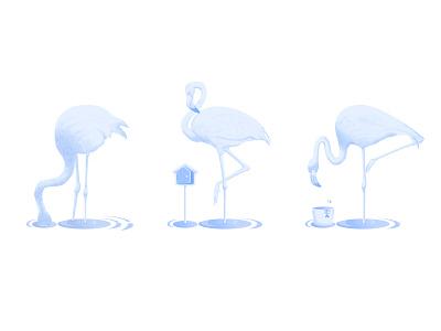 Flamingos animal flamingo illustration design