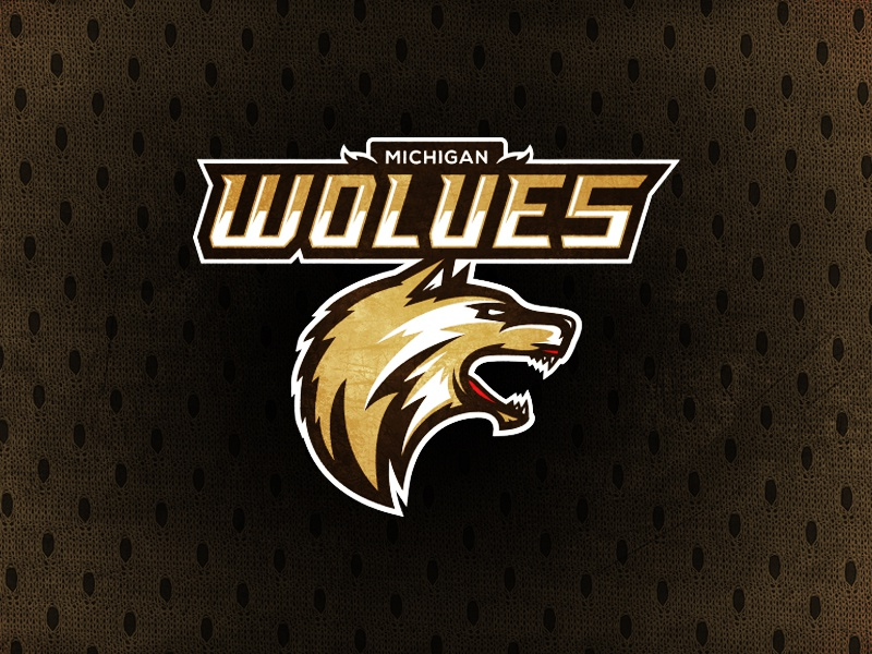 A11fl michiganwolves