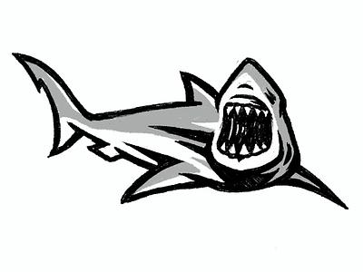 Shark Illustration   Sketch 01 shark logo sketching digital sketch branding aggressive bold shark illustration shark sketch shark brand designer graphic designer illustrator logo designer process video timelapse video illustration process logo illustration logo process sketch