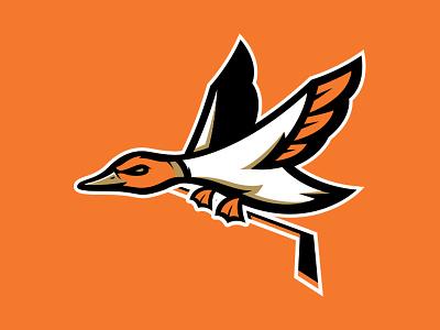 Ducks re-fresh for fun (2nd go round) illustrator logo sports ducks hockey anaheim