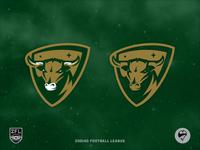 ZFL | Taurus Bulls *Update*