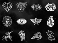 ZFL   All 12 Teams