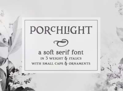 Porchlight serif font