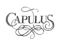 Capulus Branding Sketch 1