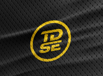 TDSE brand identity