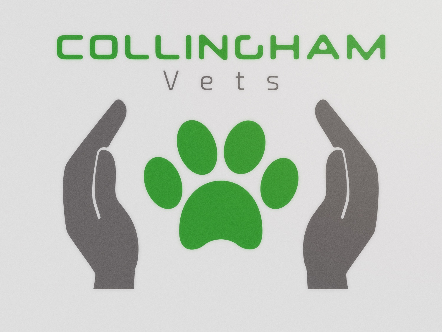 Collingham Vets - Preliminary paw animal pet clinic veterinary vets logos branding logodesigner logodesign graphic flat logo graphicdesigner graphicdesign design