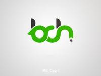 Bch Logo Design