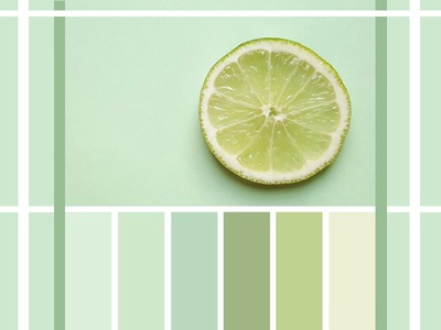 Color Schemes color scheme color daily ui illustration guides grid design thinking graphic design dailyui typography design