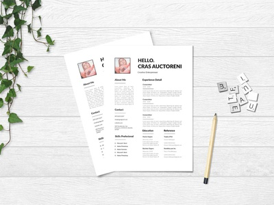 Free Clean CV/Resume Template