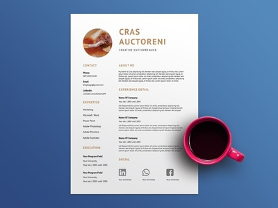 Free Chocolate Resume Template