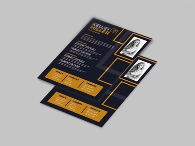 Flat CV Template (Freebies)