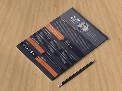 Free IT Developer Resume Template
