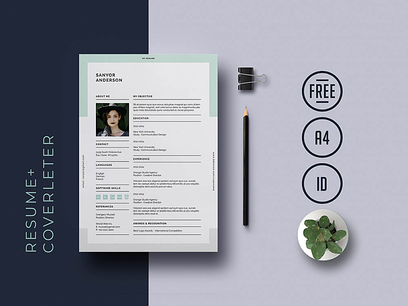 Free Universal Indesign Resume Template By Andy Khan On Dribbble