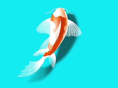 Koi illustration apple illustrator tutorial procreateapp procreate